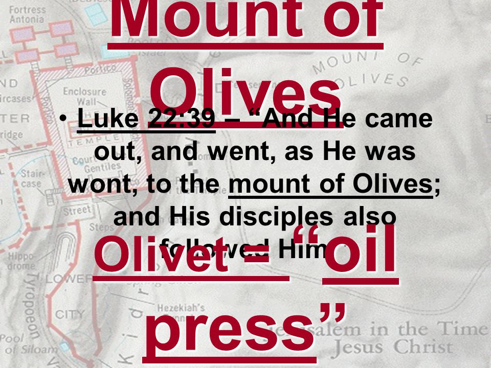 Mount of Olives Luke 22:39 – And He came out, and went, as He was wont, to the mount of Olives; and His disciples also followed Him. Olivet = oil pres