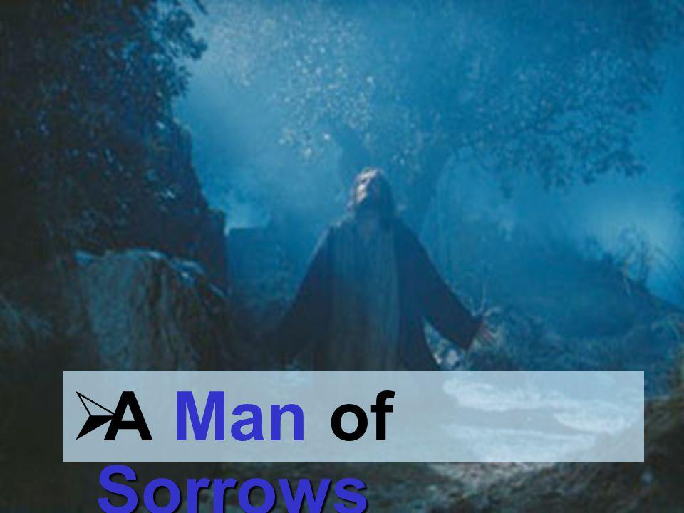 Sorrows A Man of Sorrows
