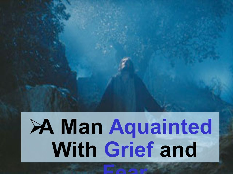 A Man Aquainted With Grief and Fear