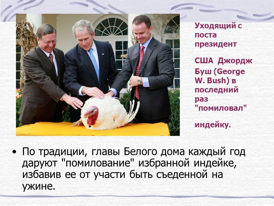 Уходящий с поста президент США Джордж Буш (George W.
