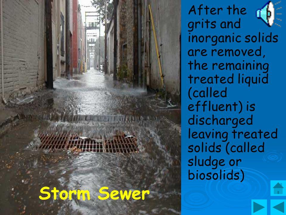 Sewage line pipe installation
