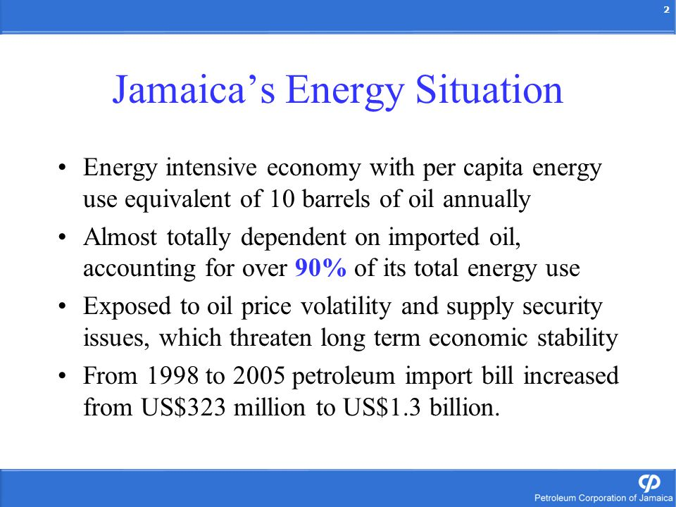 2 Energy intensive economy with per capita energy use equivalent of 10 barrels of oil annually Almost totally dependent on imported oil, accounting for over 90% of its total energy use Exposed to oil price volatility and supply security issues, which threaten long term economic stability From 1998 to 2005 petroleum import bill increased from US$323 million to US$1.3 billion.