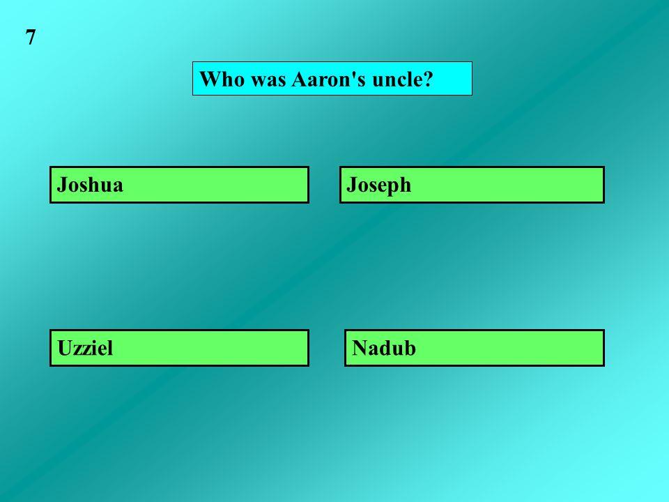 Who was Aaron s uncle? Joshua NadubUzziel Joseph 7