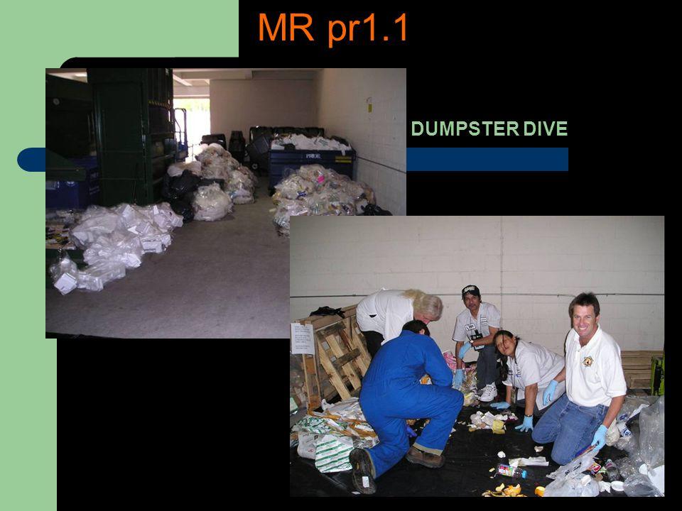 DUMPSTER DIVE MR pr1.1