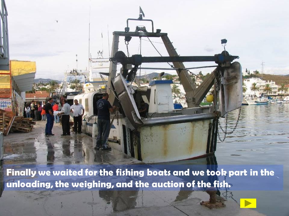 Finally we waited for the fishing boats and we took part in the unloading, the weighing, and the auction of the fish.
