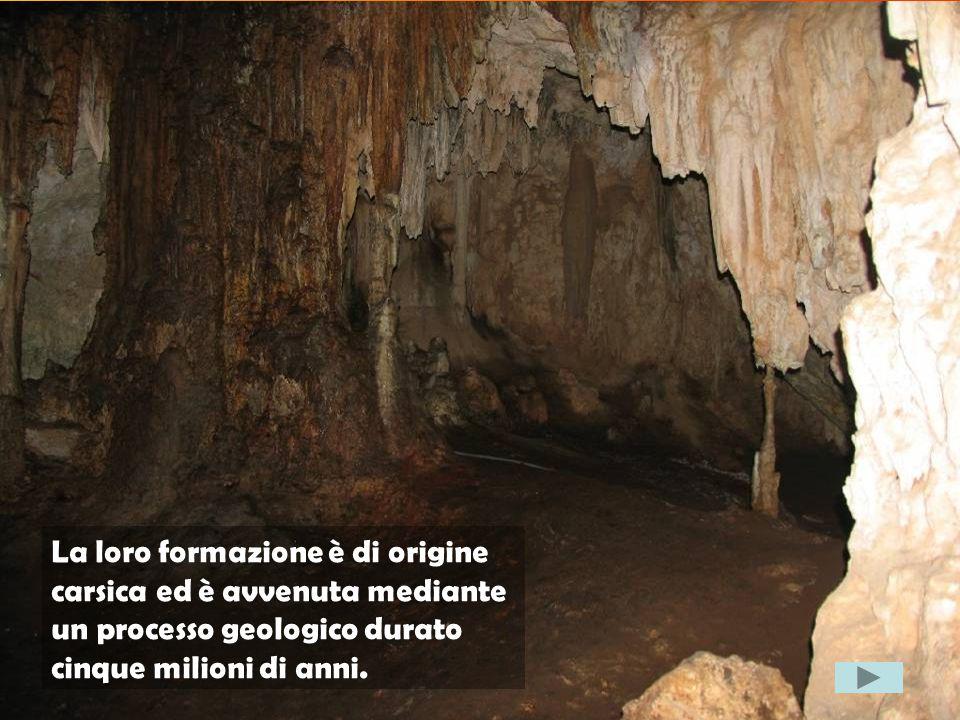 La loro formazione è di origine carsica ed è avvenuta mediante un processo geologico durato cinque milioni di anni.