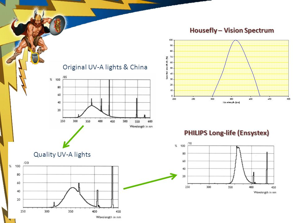 Quality UV-A lights PHILIPS Long-life (Ensystex) Original UV-A lights & China Housefly – Vision Spectrum