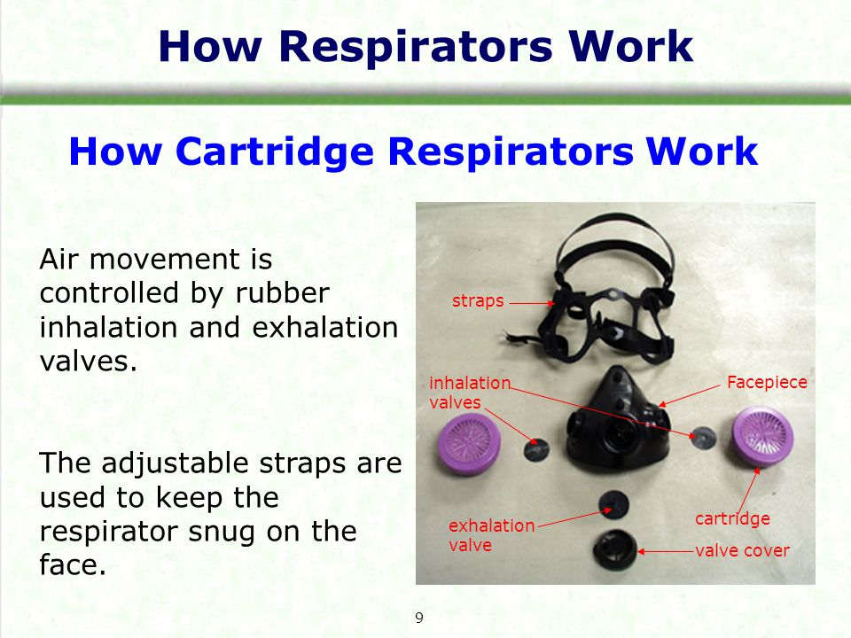 How Cartridge Respirators Work Air movement is controlled by rubber inhalation and exhalation valves.