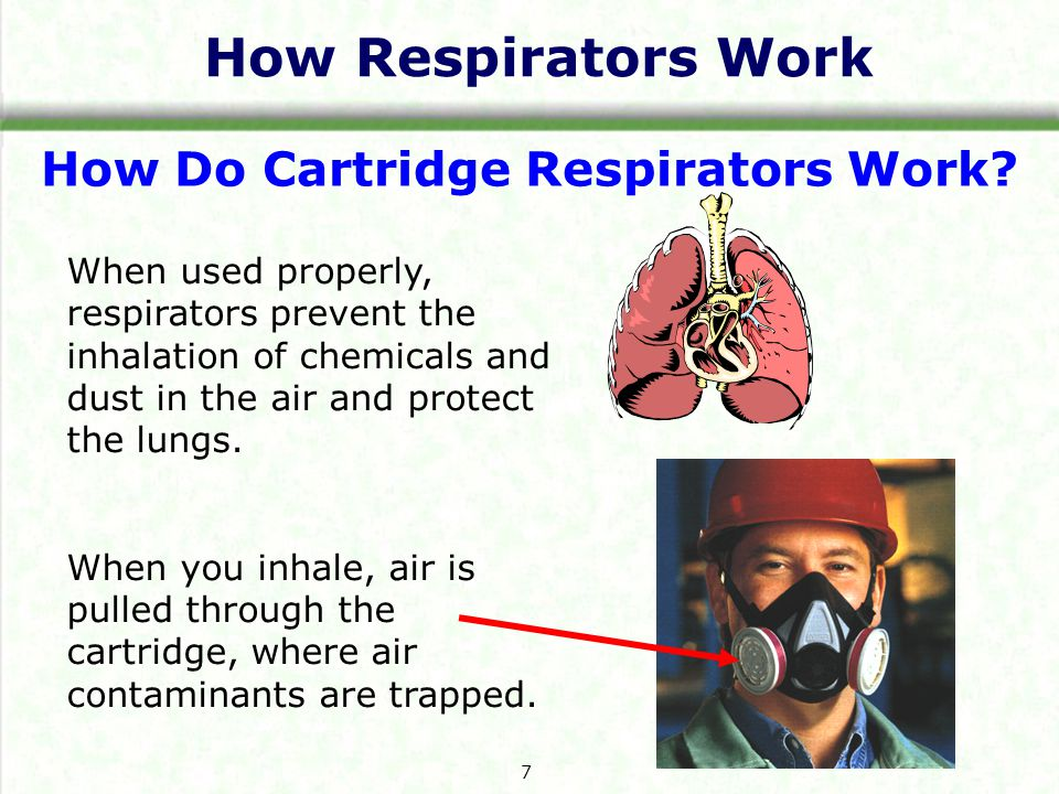 How Respirators Work How Do Cartridge Respirators Work? When used properly, respirators prevent the inhalation of chemicals and dust in the air and pr