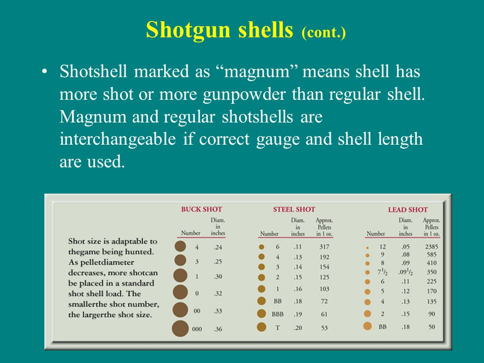 Shotgun shells (cont.) Shotshell marked as magnum means shell has more shot or more gunpowder than regular shell. Magnum and regular shotshells are in