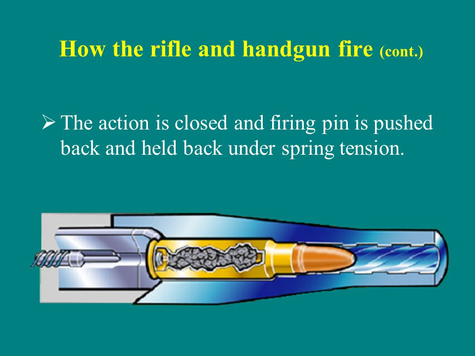 How the rifle and handgun fire (cont.) The action is closed and firing pin is pushed back and held back under spring tension.