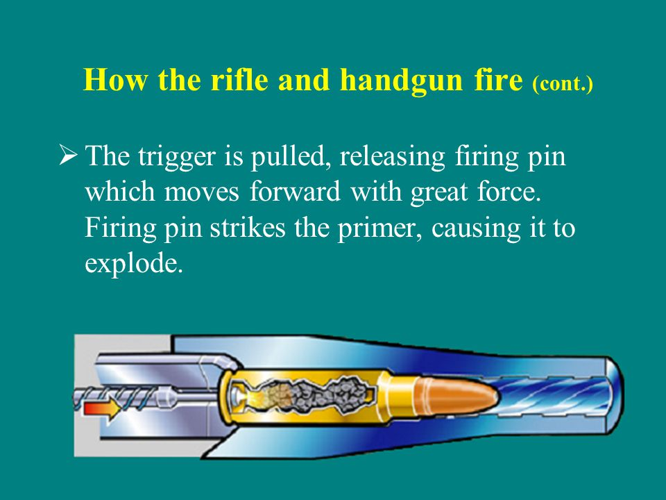 How the rifle and handgun fire (cont.) The trigger is pulled, releasing firing pin which moves forward with great force.