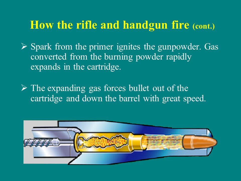 How the rifle and handgun fire (cont.) Spark from the primer ignites the gunpowder. Gas converted from the burning powder rapidly expands in the cartr