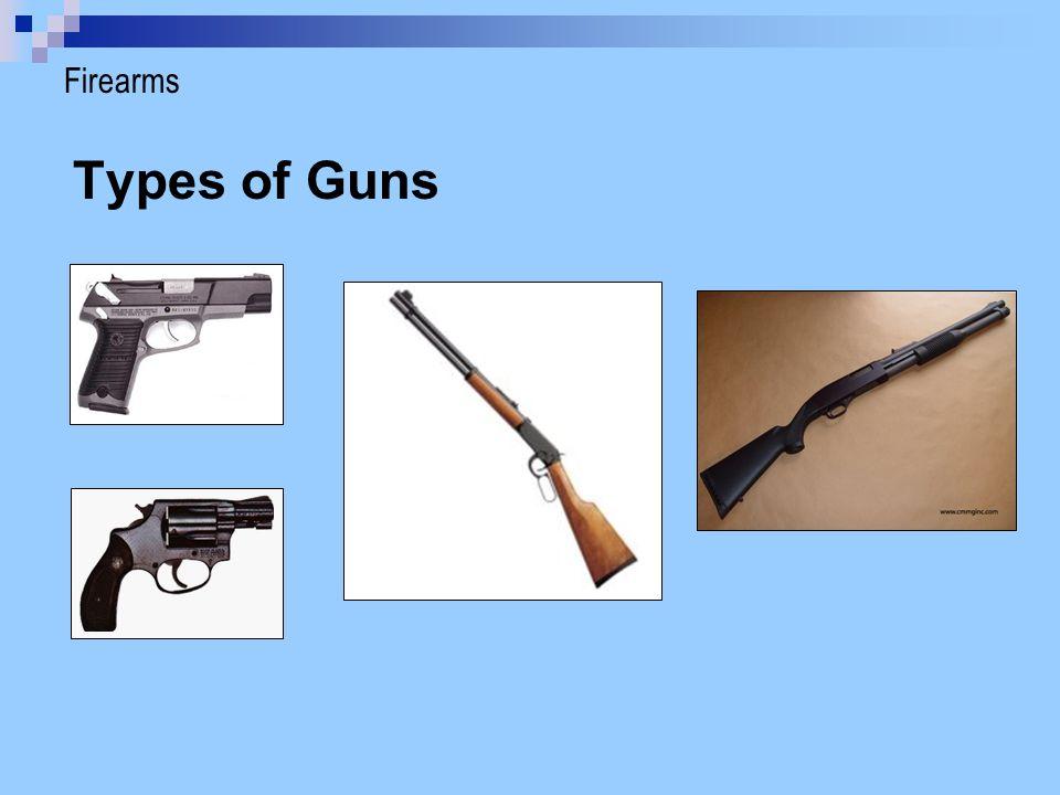 Ammunition (Bullets) Bullet Cartridge Primer Propellant (inside cartridge) Firearms > Ammunition