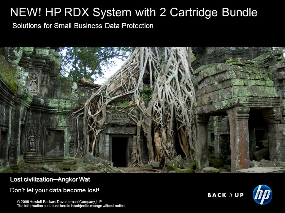 Who needs the HP RDX Removable Disk Backup System.