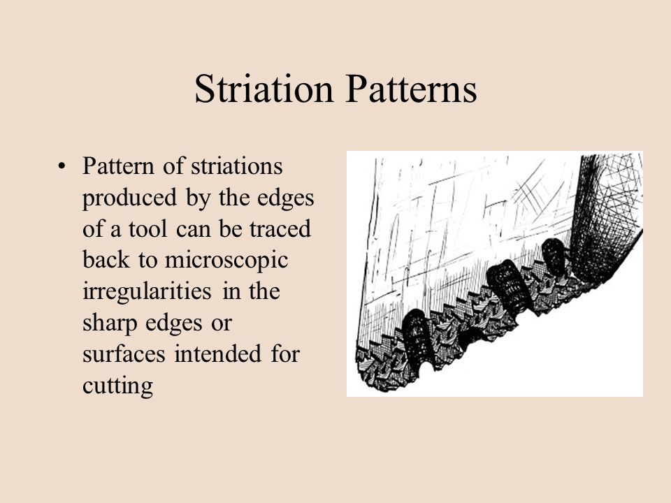 Striation Patterns Pattern of striations produced by the edges of a tool can be traced back to microscopic irregularities in the sharp edges or surfac