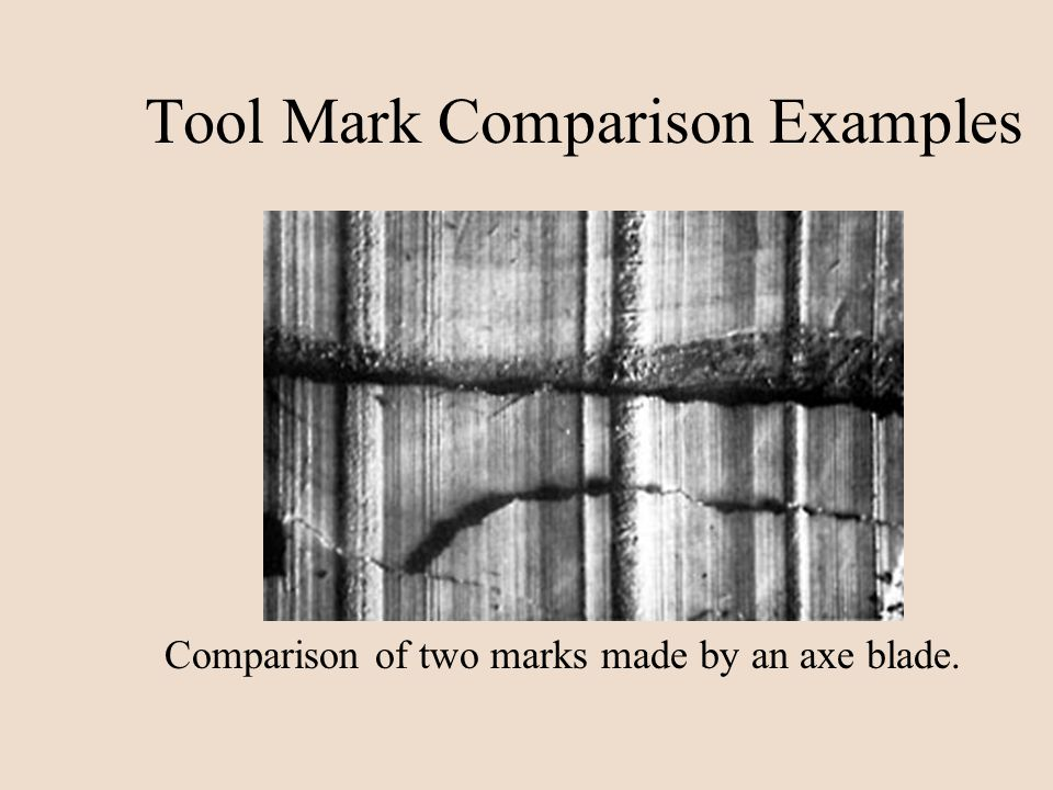 Tool Mark Comparison Examples Comparison of two marks made by an axe blade.