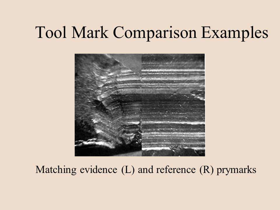 Tool Mark Comparison Examples Matching evidence (L) and reference (R) prymarks