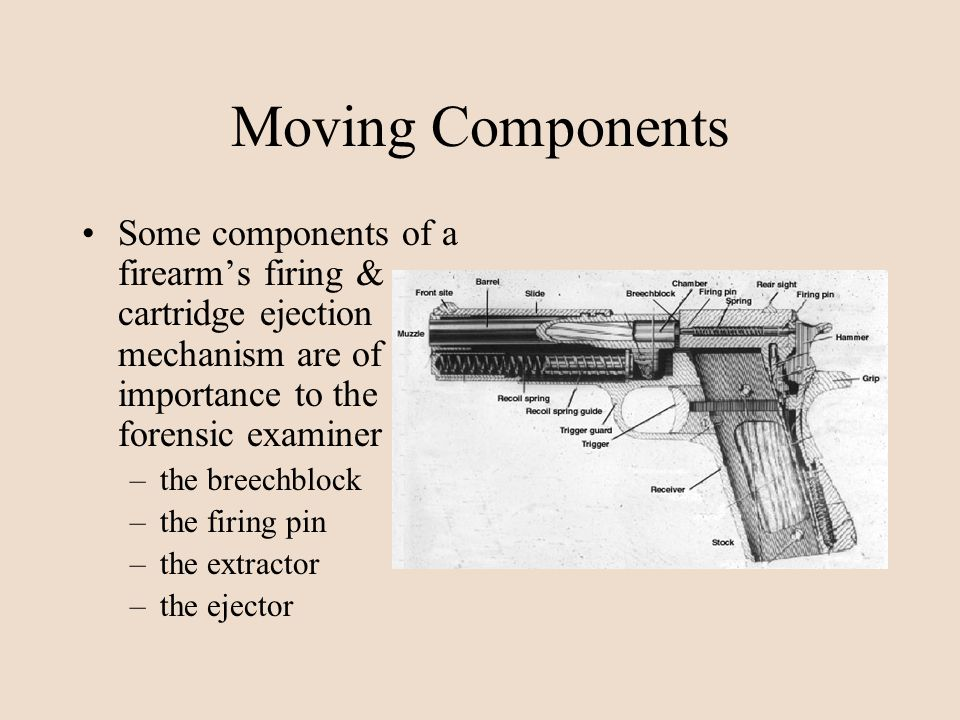 Moving Components Some components of a firearms firing & cartridge ejection mechanism are of importance to the forensic examiner –the breechblock –the