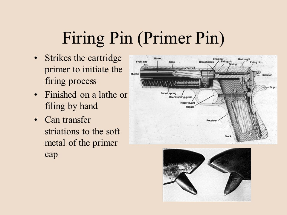 Firing Pin (Primer Pin) Strikes the cartridge primer to initiate the firing process Finished on a lathe or filing by hand Can transfer striations to t