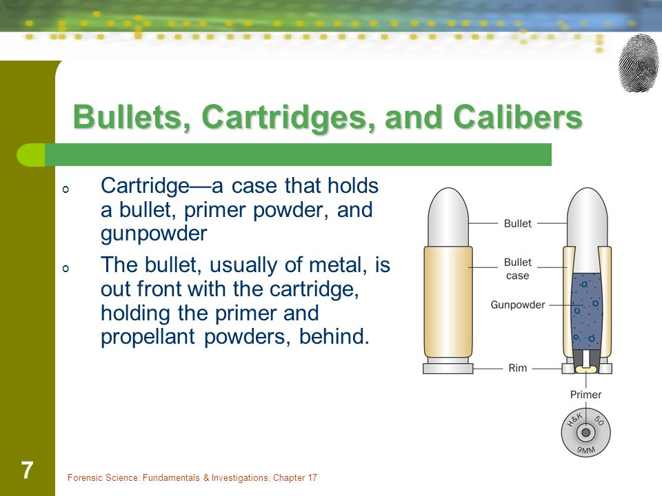 Forensic Science: Fundamentals & Investigations, Chapter 17 7 Bullets, Cartridges, and Calibers o Cartridgea case that holds a bullet, primer powder,