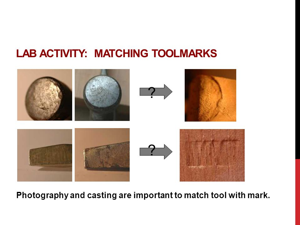 LAB ACTIVITY: MATCHING TOOLMARKS ? ? Photography and casting are important to match tool with mark.