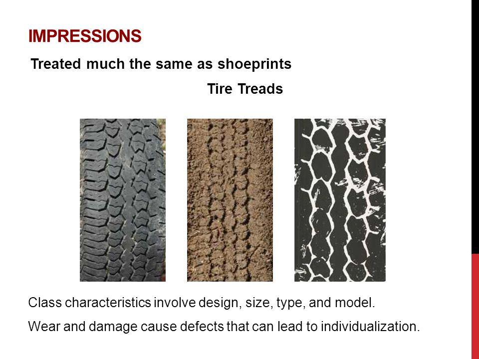 IMPRESSIONS Treated much the same as shoeprints Class characteristics involve design, size, type, and model.