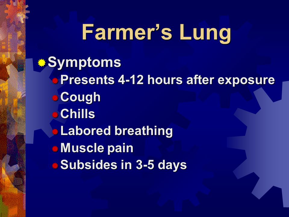 Farmers Lung Symptoms Symptoms Presents 4-12 hours after exposure Presents 4-12 hours after exposure Cough Cough Chills Chills Labored breathing Labored breathing Muscle pain Muscle pain Subsides in 3-5 days Subsides in 3-5 days