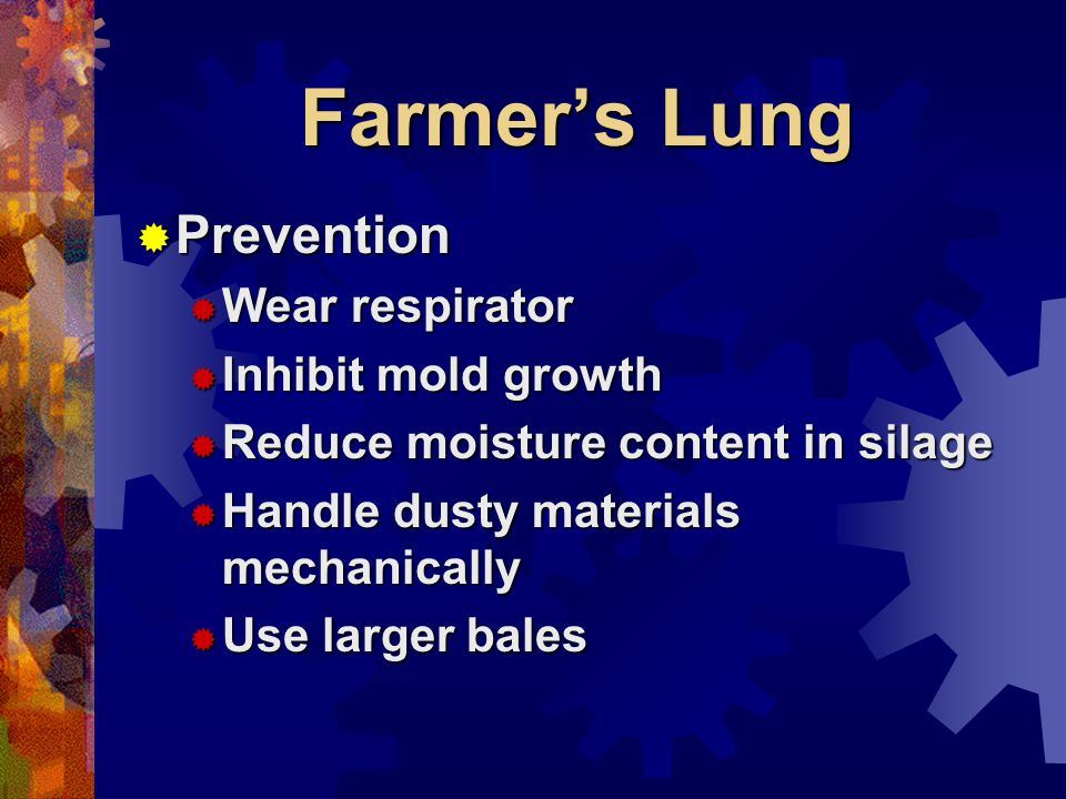 Farmers Lung Prevention Prevention Wear respirator Wear respirator Inhibit mold growth Inhibit mold growth Reduce moisture content in silage Reduce moisture content in silage Handle dusty materials mechanically Handle dusty materials mechanically Use larger bales Use larger bales