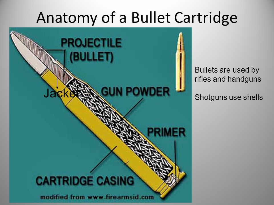 Anatomy of a Bullet Cartridge Jacket Bullets are used by rifles and handguns Shotguns use shells