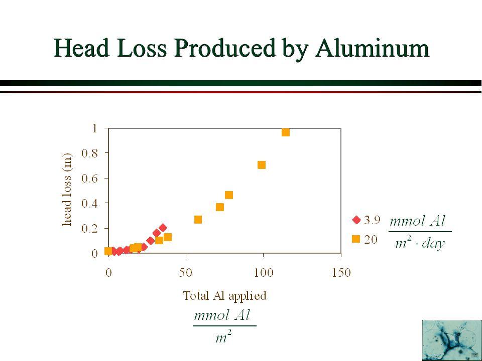 Head Loss Produced by Aluminum