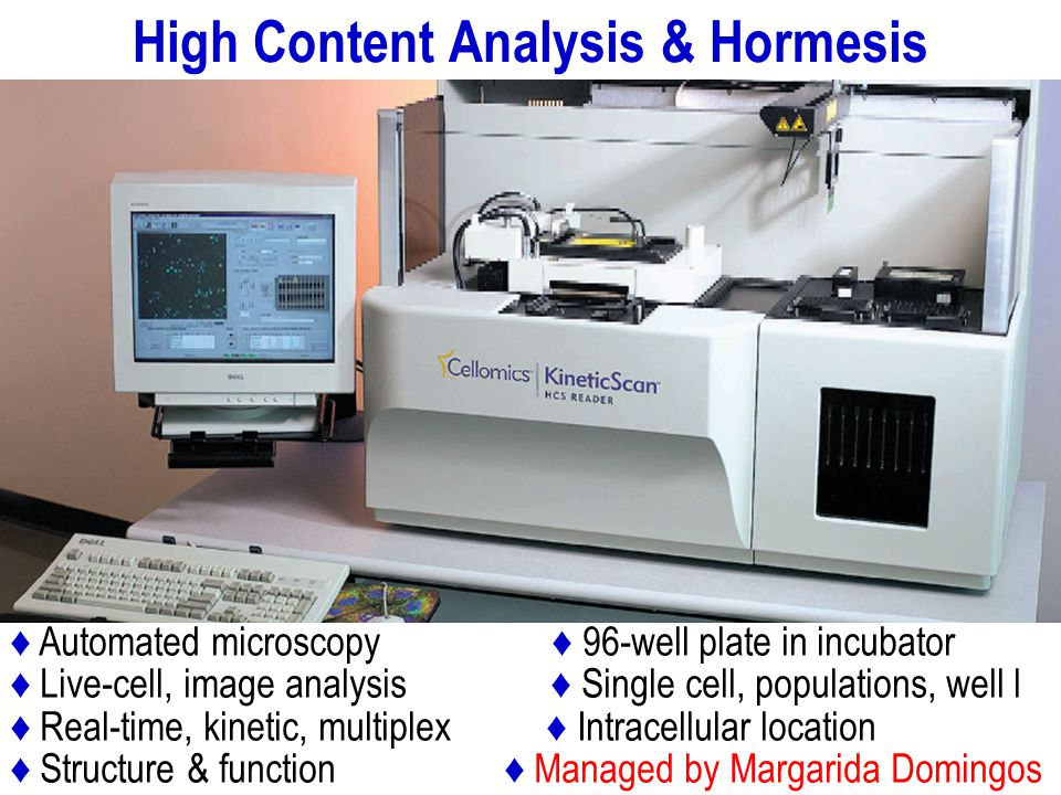 Automated microscopy 96-well plate in incubator Live-cell, image analysis Single cell, populations, well l Real-time, kinetic, multiplex Intracellular location Structure & function Managed by Margarida Domingos High Content Analysis & Hormesis