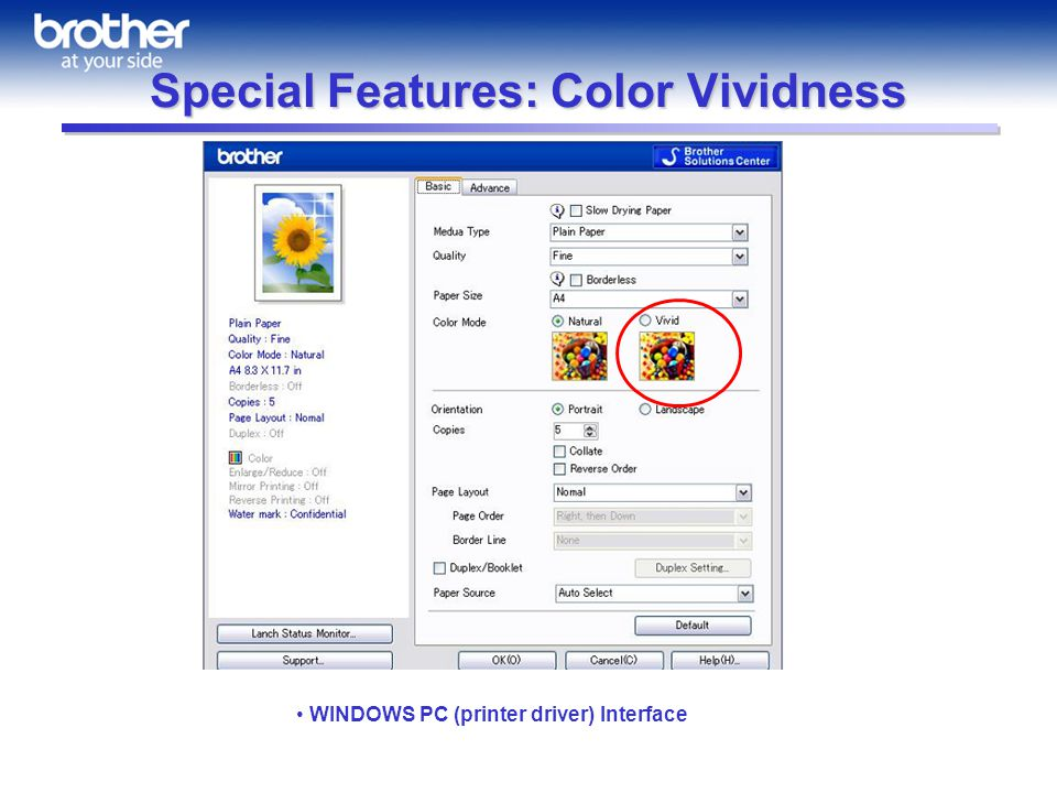 Special Features: Color Vividness WINDOWS PC (printer driver) Interface