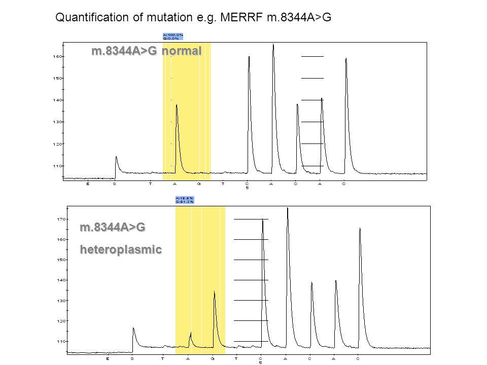 m.8344A>G normal m.8344A>Gheteroplasmic Quantification of mutation e.g. MERRF m.8344A>G