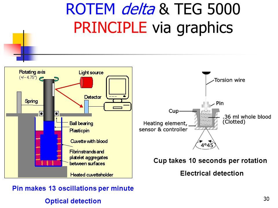 30 ROTEM delta & TEG 5000 PRINCIPLE via graphics Cup takes 10 seconds per rotation Electrical detection Pin makes 13 oscillations per minute Optical d