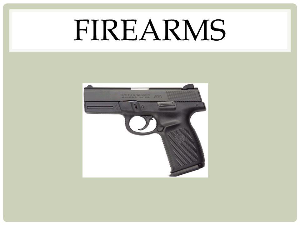 Action Chamber Barrel Rifling Bore Caliber Muzzle Hammer Magazine (Clip) Basic Anatomy of the Handgun
