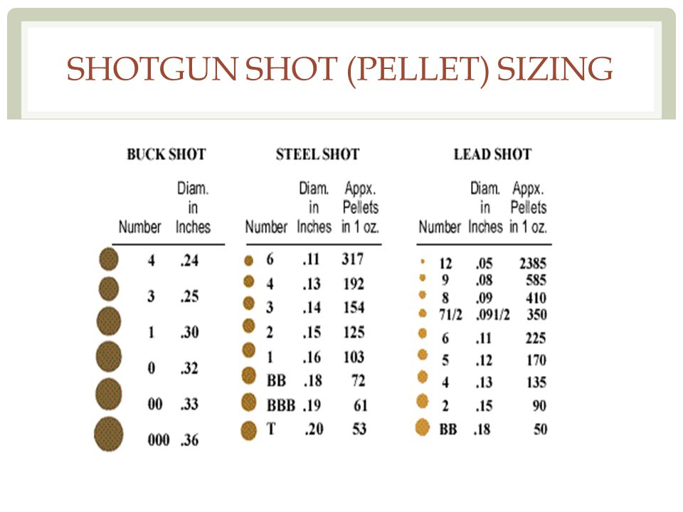 SHOTGUN SHOT (PELLET) SIZING