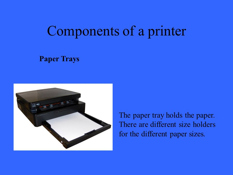 Components of a printer Paper Trays The paper tray holds the paper.
