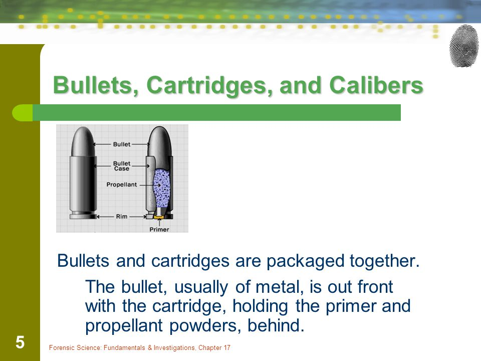 Forensic Science: Fundamentals & Investigations, Chapter 17 5 Bullets, Cartridges, and Calibers Bullets and cartridges are packaged together.