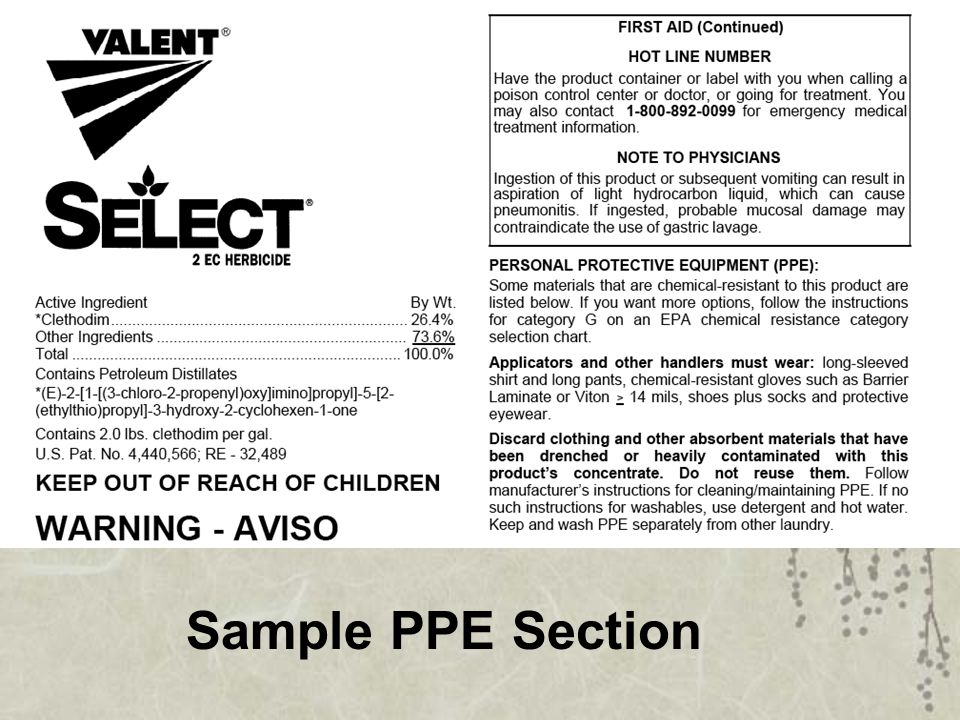 Sample PPE Section