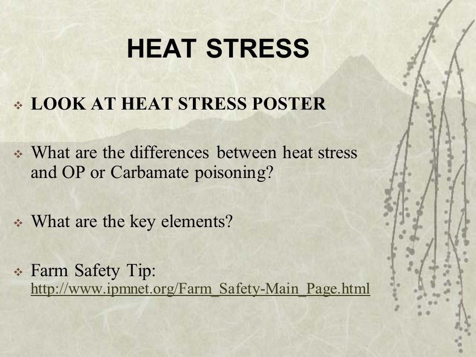 HEAT STRESS LOOK AT HEAT STRESS POSTER What are the differences between heat stress and OP or Carbamate poisoning.