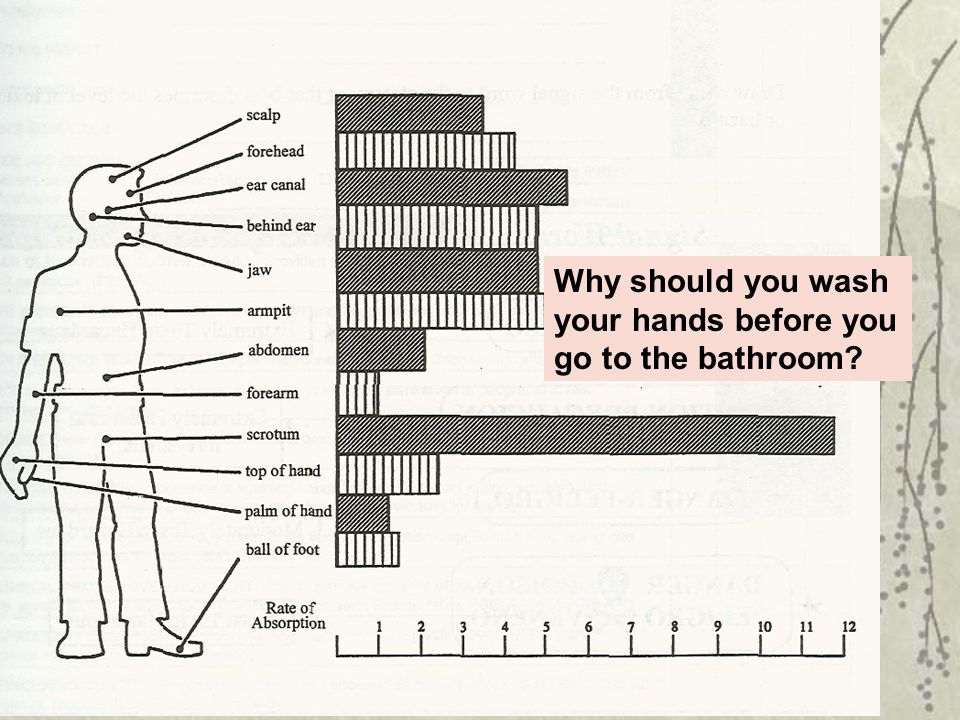 Why should you wash your hands before you go to the bathroom