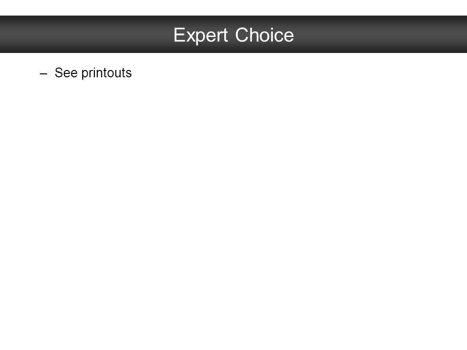 Expert Choice –See printouts