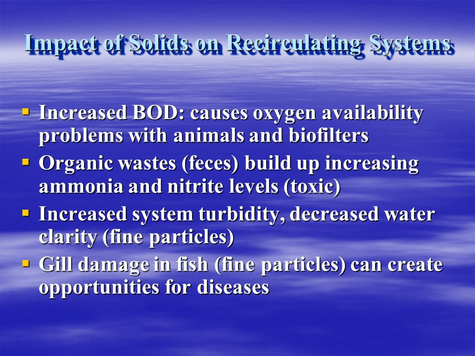 Impact of Solids on Recirculating Systems Increased BOD: causes oxygen availability problems with animals and biofilters Increased BOD: causes oxygen