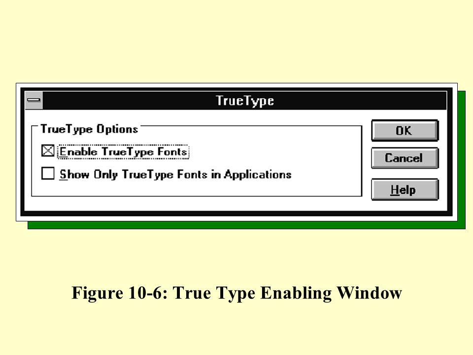 Figure 10-6: True Type Enabling Window