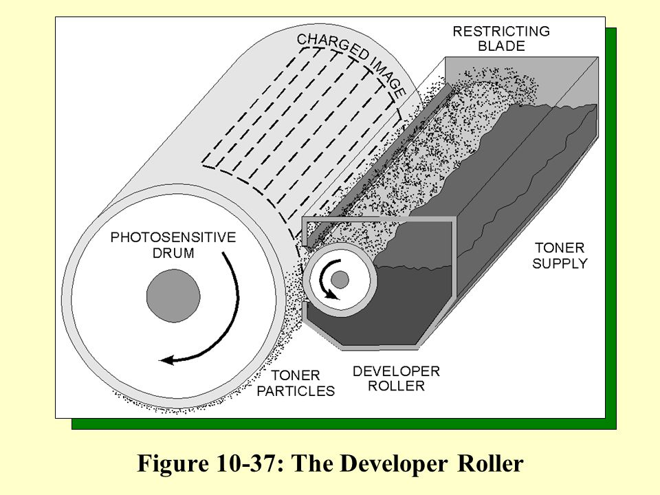 Figure 10-37: The Developer Roller