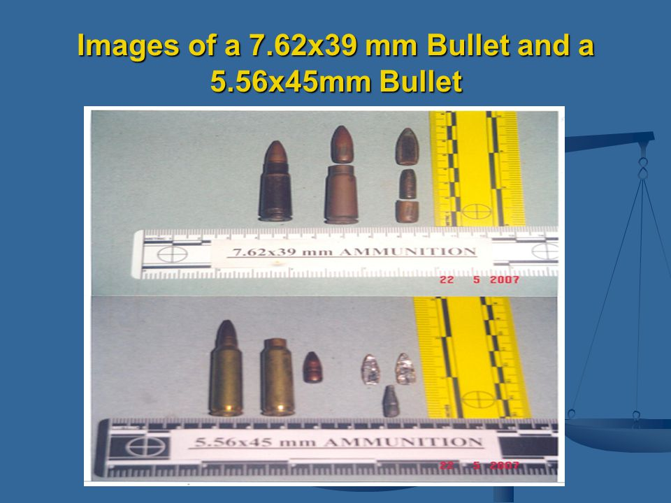 Images of a 7.62x39 mm Bullet and a 5.56x45mm Bullet