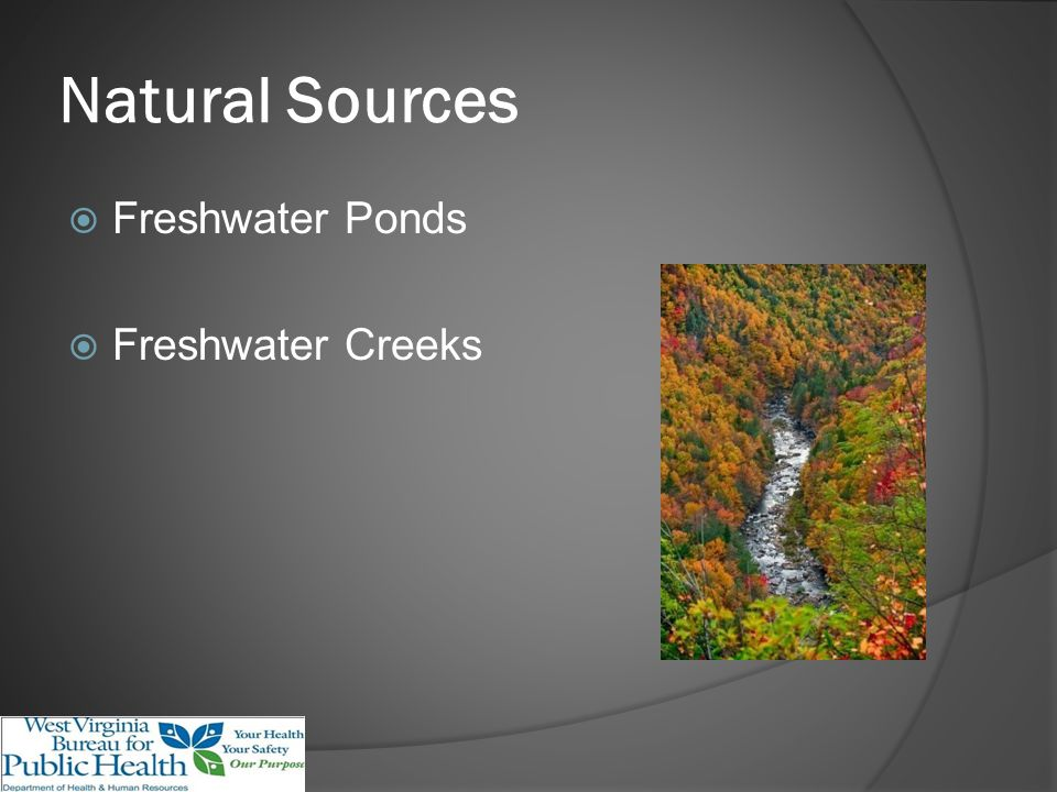 Natural Sources Freshwater Ponds Freshwater Creeks