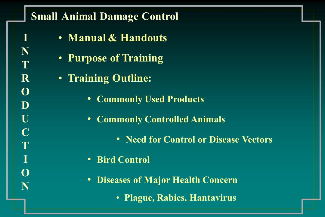 Small Animal Damage Control Rabies People at high risk can be vaccinated Any animal is capable of contracting, carrying, and transmitting Rabies can be latent Occurs most often in spring and fall Virus remains active even if frozen Death is not always probable