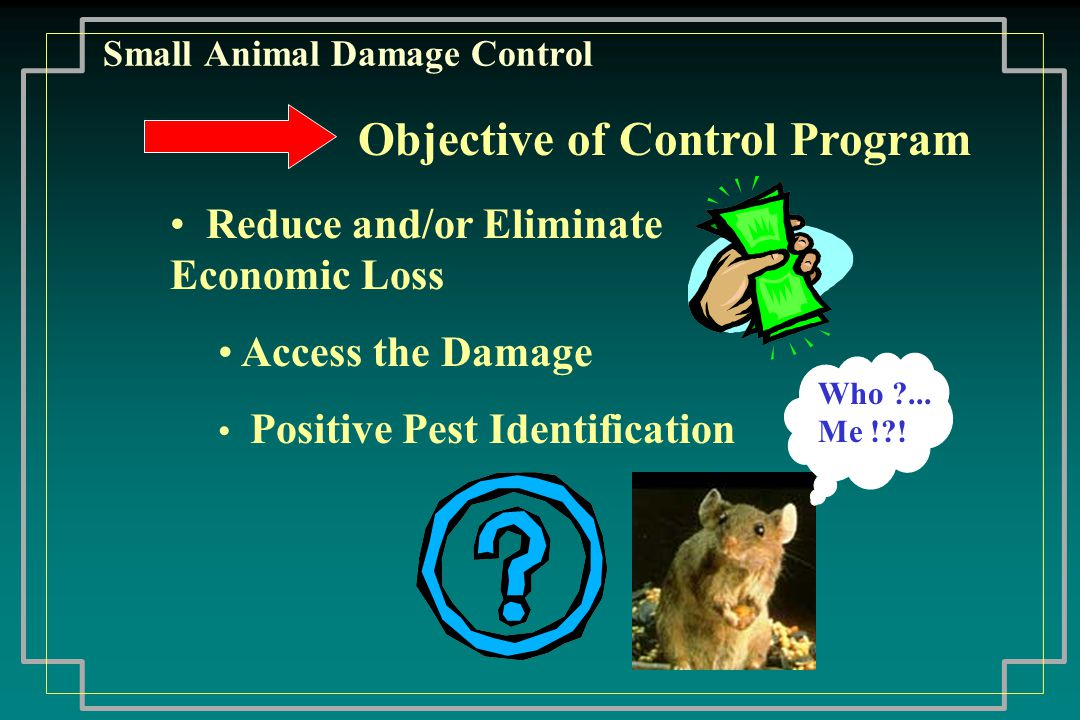 Small Animal Damage Control Bird Control Statutes Define: Protected bird means migratory birds as defined and protected under federal law Diseases: Histoplasmosis Tuberculosis Cholera Parrot Fever